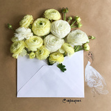Envelope Bouquet Poster di Meredith Wing