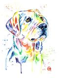 Yellow Lab Print by Lisa Whitehouse