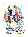 Basset Hound Prints by Lisa Whitehouse