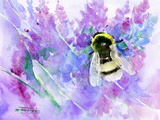 Bumblebee And Lavender Prints by Suren Nersisyan