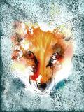 Fox Wild Animal Mammal Prints by  Grab My Art