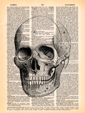 Skull Posters by  Book Dictionary Art