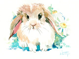 Suren Bunny Flower Prints by Suren Nersisyan