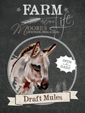 Redstreake Chalkboard Mule Print by Jennifer Redstreake