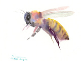 Honey Bee Print by Suren Nersisyan
