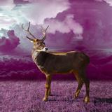 Purple Clouds Deer Posters by  Wonderful Dream