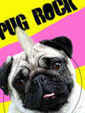Pug Rock Portrait Prints by Noah Bay