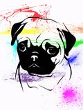 Pug Print by  Indigo Sage Design