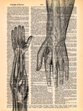 The Arm Prints by  Book Dictionary Art