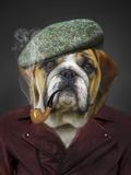 Hipster Dog Animal Print by  Wonderful Dream