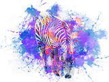 Crazy Zebra Print by  Lebens Art