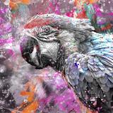 Crazy Parrot - Square Stampa giclée di  Lebens Art