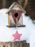 Bird House Winter Prints by  Lebens Art