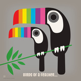 Rainbow Toucans Square Prints by  Anderson Design Group