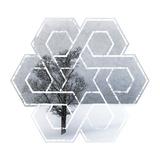 Wintertime Lonely Tree Kunstdrucke von Melanie Viola