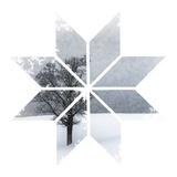 Snowflake Lonely Tree Kunstdruck von Melanie Viola