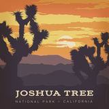 Joshua Tree Np Square Prints by  Anderson Design Group