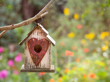 Bird House Prints by  Lebens Art