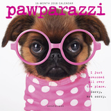 Pawparazzi - 2018 Calendar Kalenders