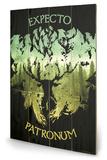 Harry Potter - Expecto Patronum Panneau en bois