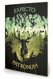 Harry Potter - Expecto Patronum Targa di legno
