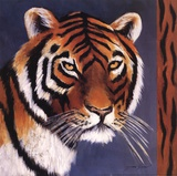 Exotic Tiger Prints by Tara Gamel