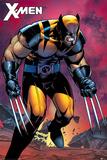 X-Men - Wolverine Berserker Rage Prints
