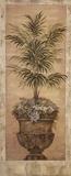 Parlor Palm I Poster by Pamela Gladding