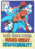 Spider-Man Metalen bord