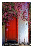 Red Door Prints by Dean Mayo