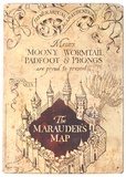 Harry Potter - Marauder's Map Metalen bord