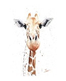 Giraffe Watercolor Poster by Eric Sweet
