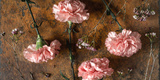 Carnations on the Brown Stone Table Top View Photographic Print by Denis Karpenkov
