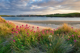 A View across the Camel Estuary Toward Padstow Photographic Print by Helen Dixon