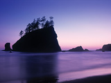 Olympic National Park Washington State Usa Photographic Print by Peter Adams