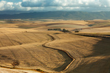 Rolling Farmland in the Overberg Region Near Villiersdorp, Western Cape, South Africa Photographic Print by David Noton