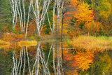 Autumn and the Vermilion River Capreol Ontario Canada Photographic Print by Chris Cheadle