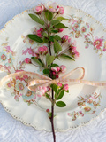 Branch of Apple Blossom on Vintage Plate Photographic Print by Georgianna Lane