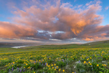 Columbia Hills State Park, Washington: Approaching Storm Photographic Print by Terry Donnelly