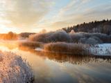 River and Trees in Winter, Storån, Åtvidaberg, Östergötland, Sweden Photographic Print by Mikael Svensson