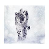 Digital Painting of Leopard Prints by Paul Watzlaw