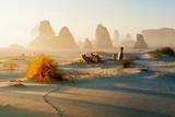 Sea Stacks and Animal Tracks at Bandon Beach and Sun Rays Oregon Photographic Print by Dennis Frates