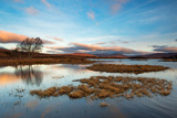 Early Morning Light at Loch Ba, Rannoch Moor Scotland UK Photographic Print by Tracey Whitefoot