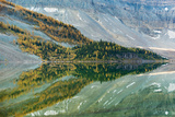 Western Larch (Larix Occidentalis), Reflected in Lake Magog, Mt Photographic Print by Kevin Schafer