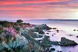 Sunrise and Purple Ice Plant Blossoms and Ocean. Pacific Grove, California Photographic Print by Dennis Frates