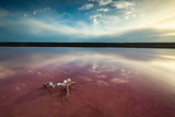The Pink Lagoon at Port Gregory, West Australia Photographic Print by David Noton