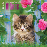 For the Love of Kittens - 2018 Mini Calendar Calendriers