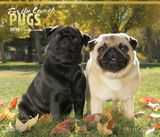 For the Love of Pugs Deluxe - 2018 Calendar Kalenders