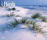 Florida, Wild & Scenic Deluxe - 2018 Calendar Calendars