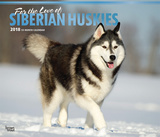 For the Love of Siberian Huskies Deluxe - 2018 Calendar Calendarios